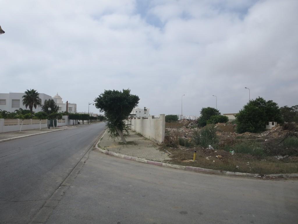 YASMINE-EL-HAMMAMET (6)