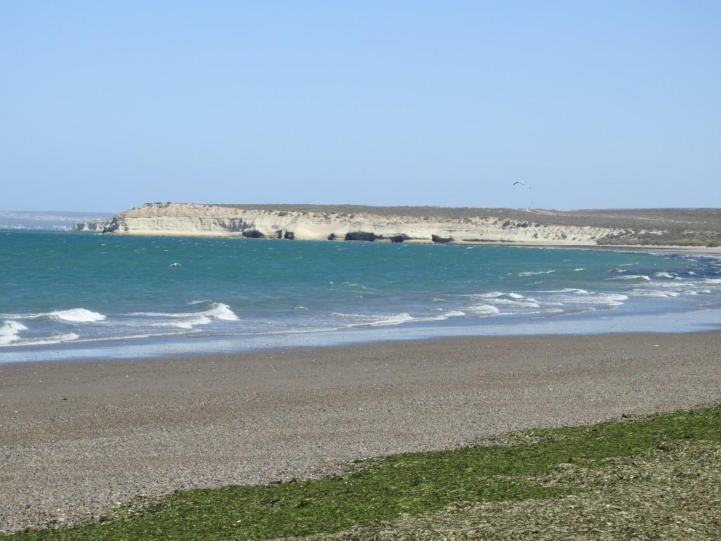 playa el doradillo - península valdés , um dos locais onde se avistam frequentemente as baleias