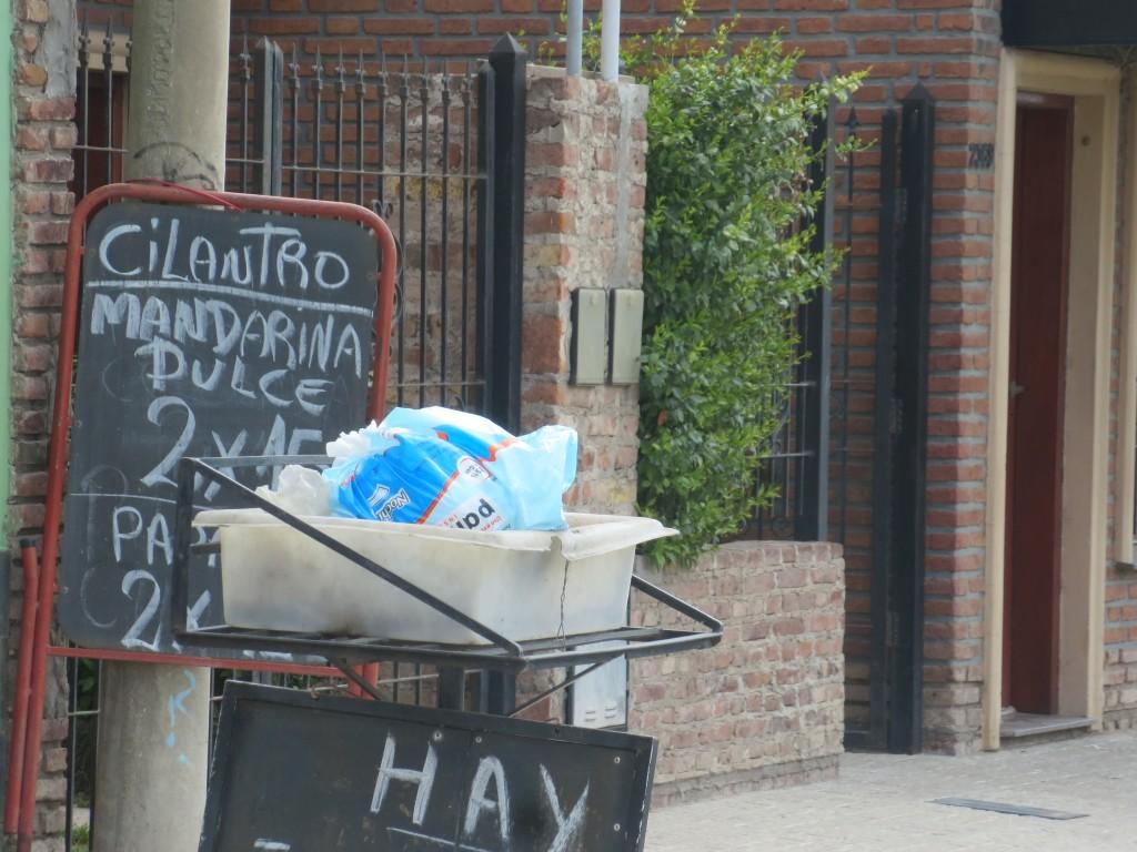 é degradante ver , em certas cidades , ruas mais ou menos elegantes , com estes mostrengos às portas das casas.....