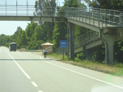eu nunca tinha visto uma auto-estrada com paragens de autocarro......