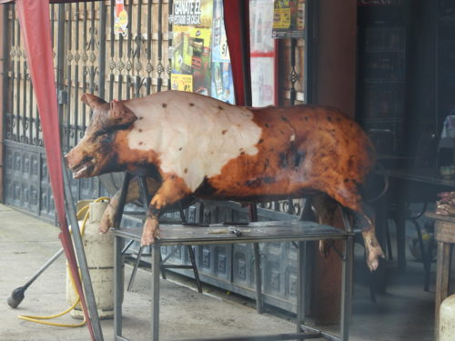 para eles a maior delícia é a pele tostada , a carne quase nem ligam...