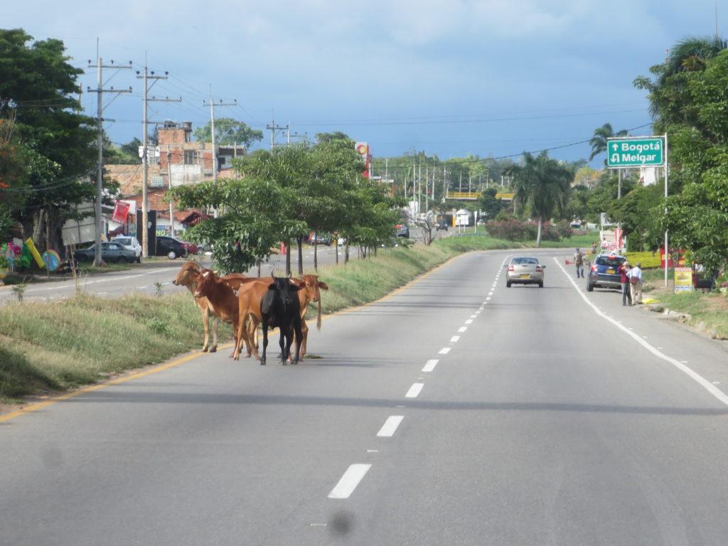 auto-estrada colombiana : vale tudo !!!!